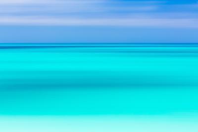 Tropical Abstract V