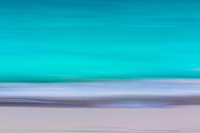 Tropical Abstract VII