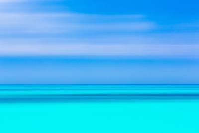 Tropical Abstract VI