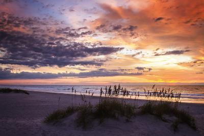 September Sunrise II