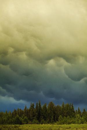 Sky Warning