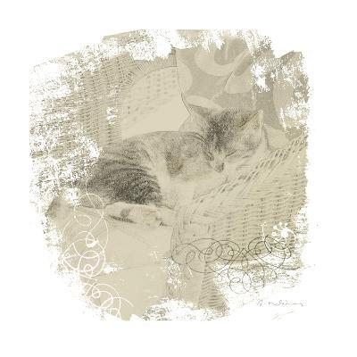 Feline Illustration I
