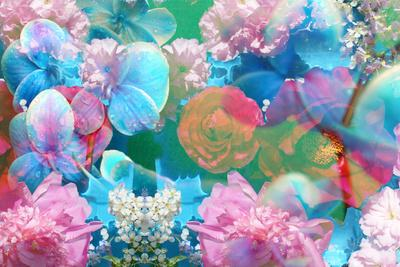 Dreamy Photographic Layer Work of Flowers, Floral Montage