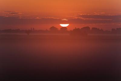 Austria, Burgenland, Neusiedlersee (Lake), Fertš National Park, Sunrise