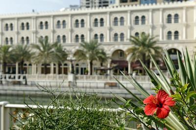 Vegetation, Local Recreation, 'Al Qasba', Entertainment District, Emirate of Sharjah