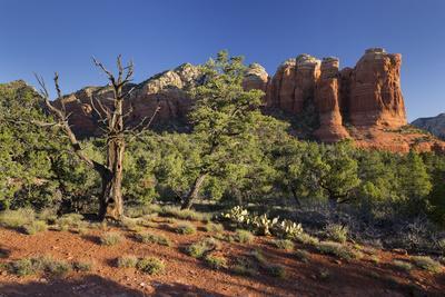 Coffe Pot Rock, Buena Vista Drive, Sedona, Arizona, Usa