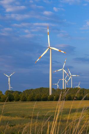 Europe, Germany, Saxony-Anhalt, Magdeburg Bšrde, Wind Turbines
