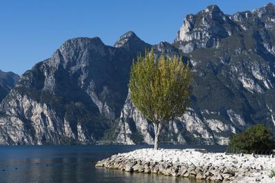 Lake Garda, Torbole, Beach, Trentino, Italy, Mountain Lake, Holiday Region, Relaxing, Vacation