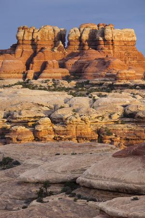 Needles District, Canyonlands National Park, Utah, Usa