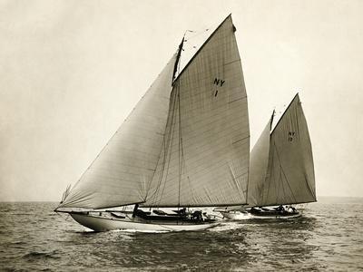 155448 Alera and Fiji