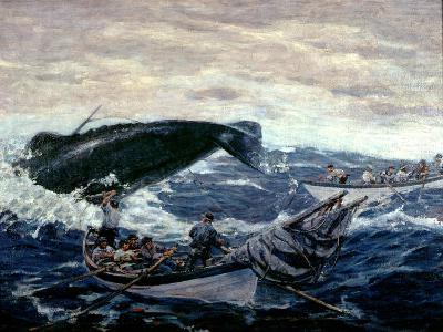 Sperm Whaling Fast Boat Ca. 1900-1930