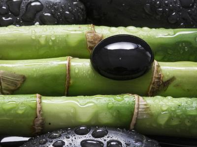 Black Stone on Bamboo