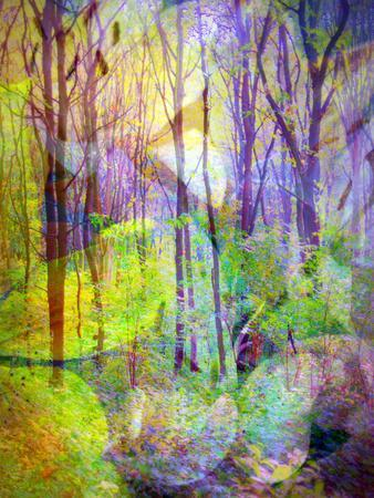 Montage of Trees and Flowers