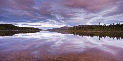 Sweden, Lapland, Stora Sjšfallet National Park, Net Curtain Lulevatten