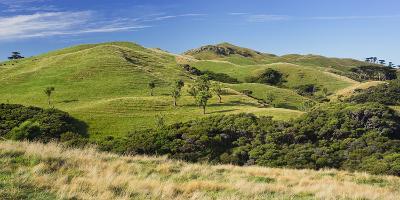 Wharariki, Tasman, South Island, New Zealand