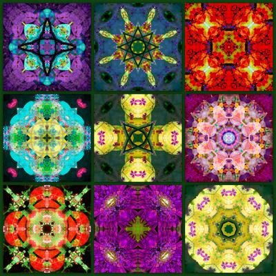 A Mandala from Flowers