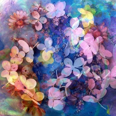 Colorful Translucent Layer Work from Orchid and Hydrangea
