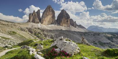 Tre Cime Di Lavaredo (Three Merlons), Meadow, South Tyrol