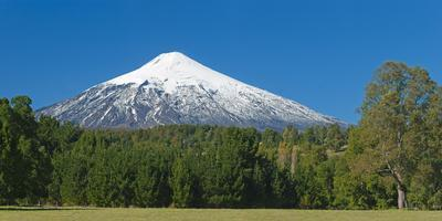 South America, Chile, Patagonia, Volcano Villarrica, Snowy Summit, Forest