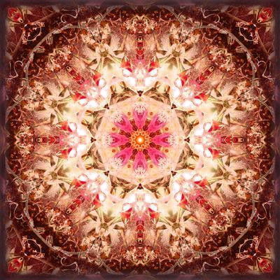 A Mandala Ornament from Flowers, Photography, Layer Artwork