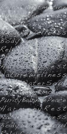 Black Stones in the Water, Writing, Zen, Spa