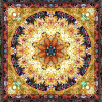 Photomontage of Flowers and Textures in a Symmetrical Ornament, Mandala