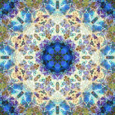 Filigree Shining Mandala Ornament from Flower Photographs, Conceptual Layer Work