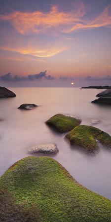 Algae Covered Rocks at the Thong Reng Beach, Sunrise, Koh Phangan Island, Thailand