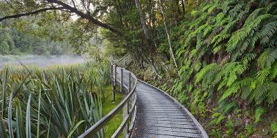 Visitor's Footbridge at the Lake Matheson, West Coast, South Island, New Zealand