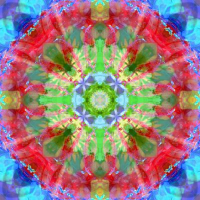 Composing of Flowers in a Mandala Ornament