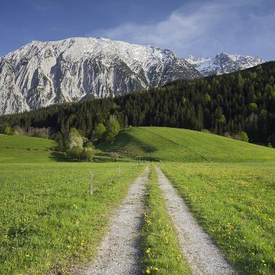 Austria, Styria, Grimming, Meadow, Lane