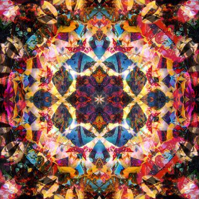 Symmetric Layer Work from Flower Photographs
