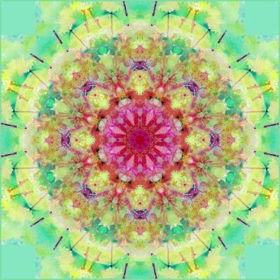 Symmetric Floral Montage