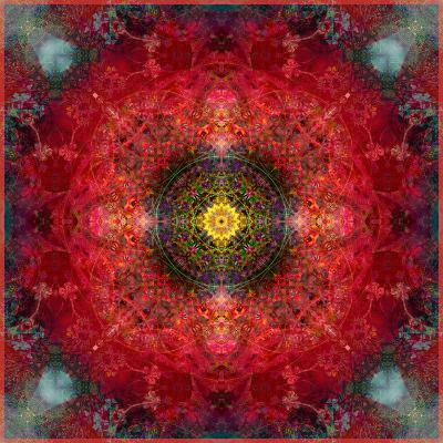 An Energetic Symmetric Onament from Flower Photographs