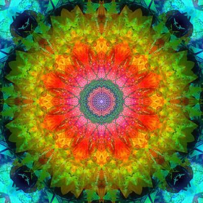 Mandala Ornament of Flowers, Composing