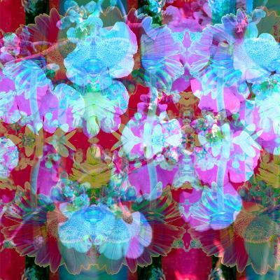 Colorful Photographic Layer Work from Orchids and Floral Ornaments