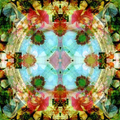 A Mandala Out of Flower a Montage