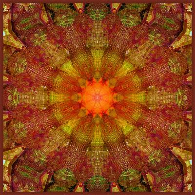 A Mandala from Leafes and Flowers, Conceptual, Symmetric Layer Work