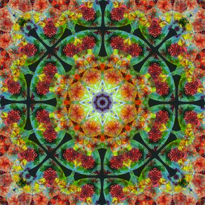 A Mandala from Flowers, Photograph, Many Layer Artwork