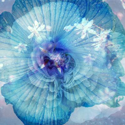 Composing of a Flower in Blue Tones with White Flowering Branch