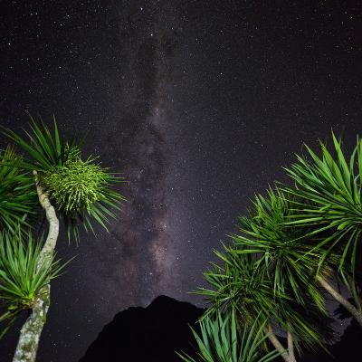 Starry Sky in Milford Fictile, Fiordland National Park, Southland, South Island, New Zealand