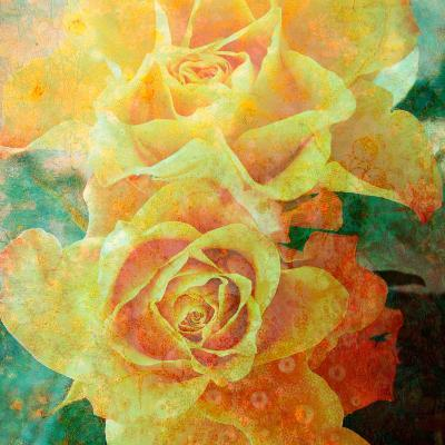 A Floral Montage of Yellow Roses and Ornamental Texture, Photograph, Layer Work