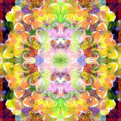 Mandala Ornament from Red Blooming Orchids, Conceptual Photographic Layer Work