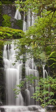 Purakanui Falls, Catlins, Otago, South Island, New Zealand