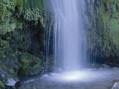 New Zealand, North Island, Mt.Taranaki National Park, Dawson Falls, Waterfall