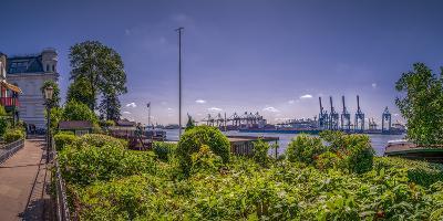 Germany, Hamburg, Elbe (River), …velgšnne, Elbwanderweg