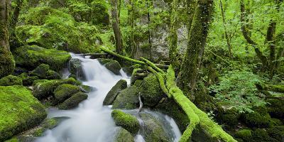 Cascade You Verneau, Nans-Sous-Sainte-Anne, Doubs, France