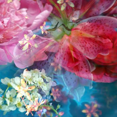 Floral Montage, Photographic Layer Work from Blossoms in Blue Water