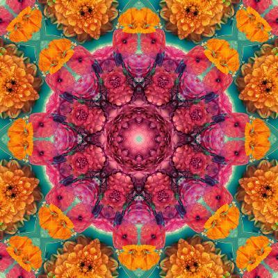 Symmetric Ornament from Flowers, Photographic Layer Work