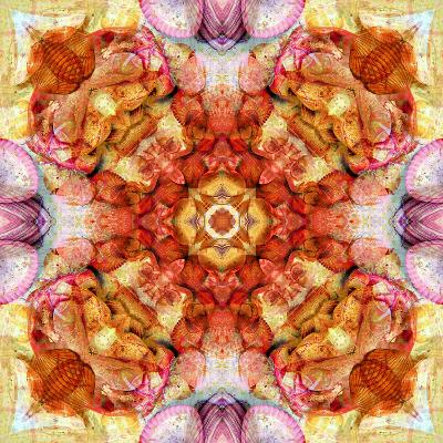 A Floral Mandala with Seahells